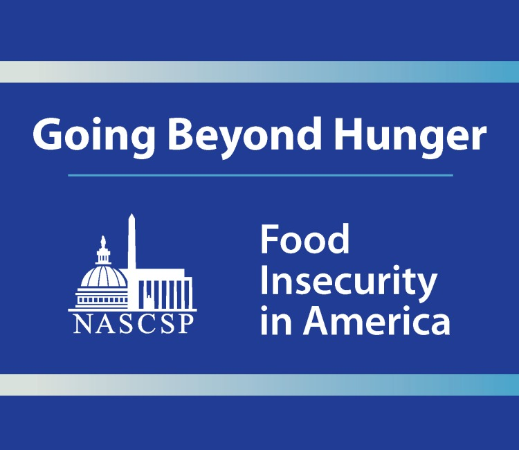 Food Security Issue Brief Cover Picture